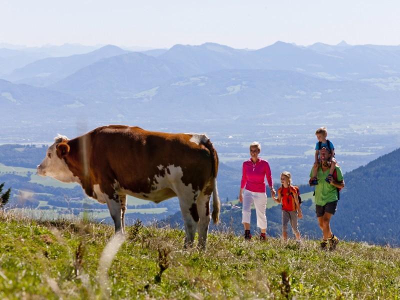 Wanderurlaub mit Familie Berchtesgaden
